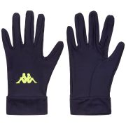 Broxbourne Borough Aves 2 Glove