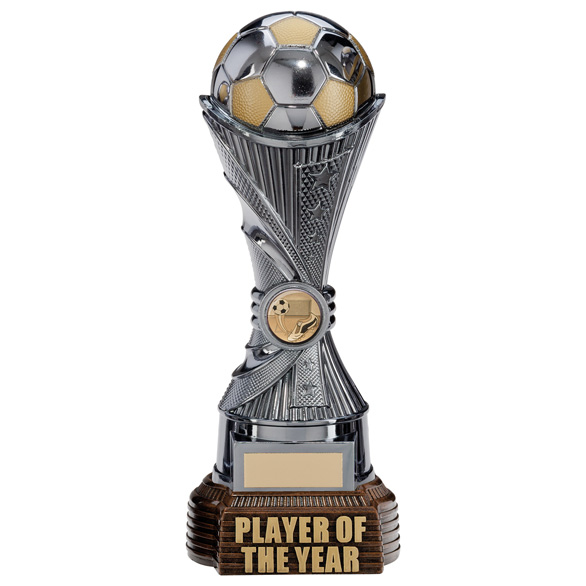 All Stars Player of the Year